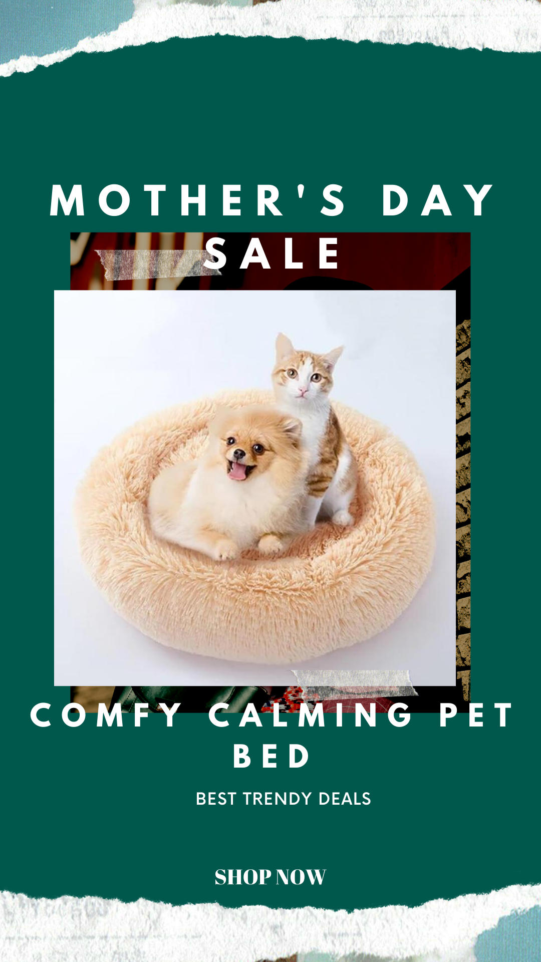 Comfy pet bed in 2020 Dog pet beds, Pets