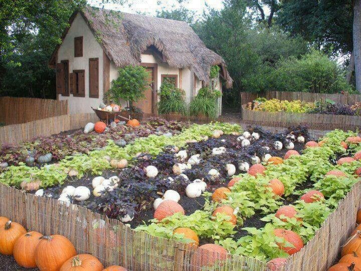 Pumpkin Patch Vegetable Garden Design Pumpkin Garden Veggie Garden