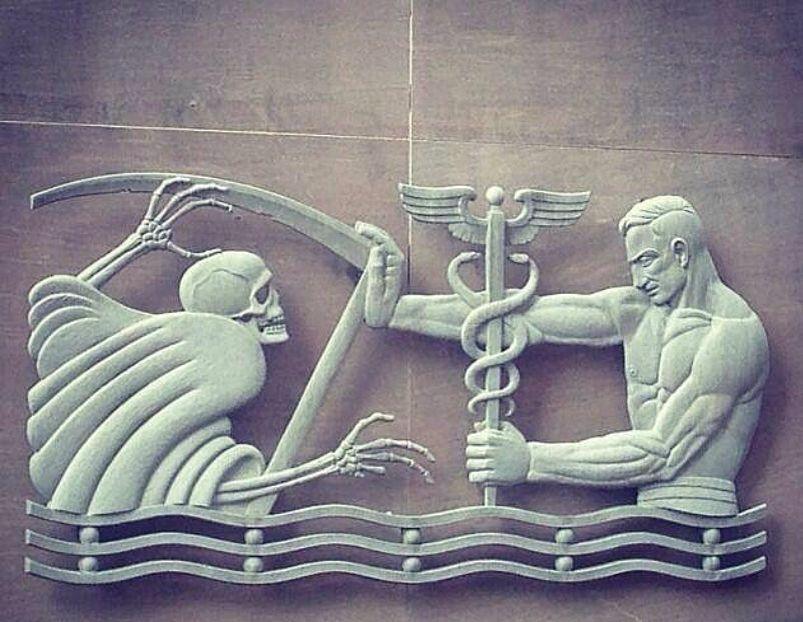 Pin On Medicine Anatomy Artifacts Graphics
