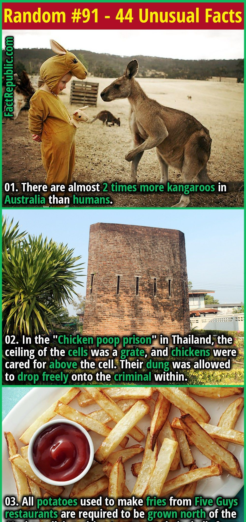 7 Fun Facts You Probably Didnt Know about Usual Things