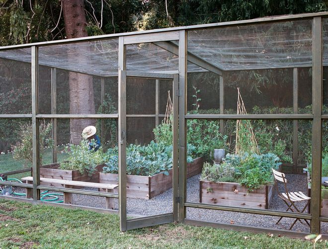 Screened In Garden With Raised Beds To Protect Crops From 640 x 480