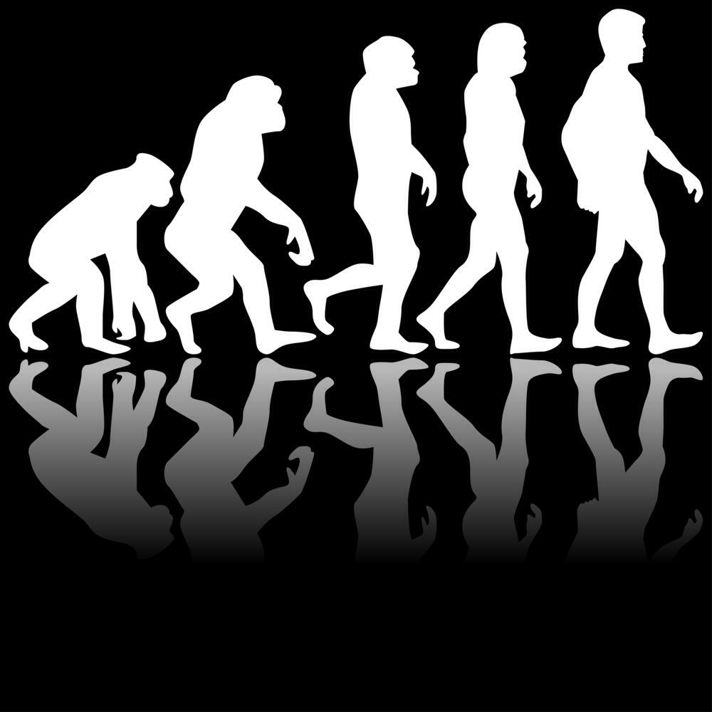 This is a picture of evolution. I chose this picture because it shows how the human race evolved