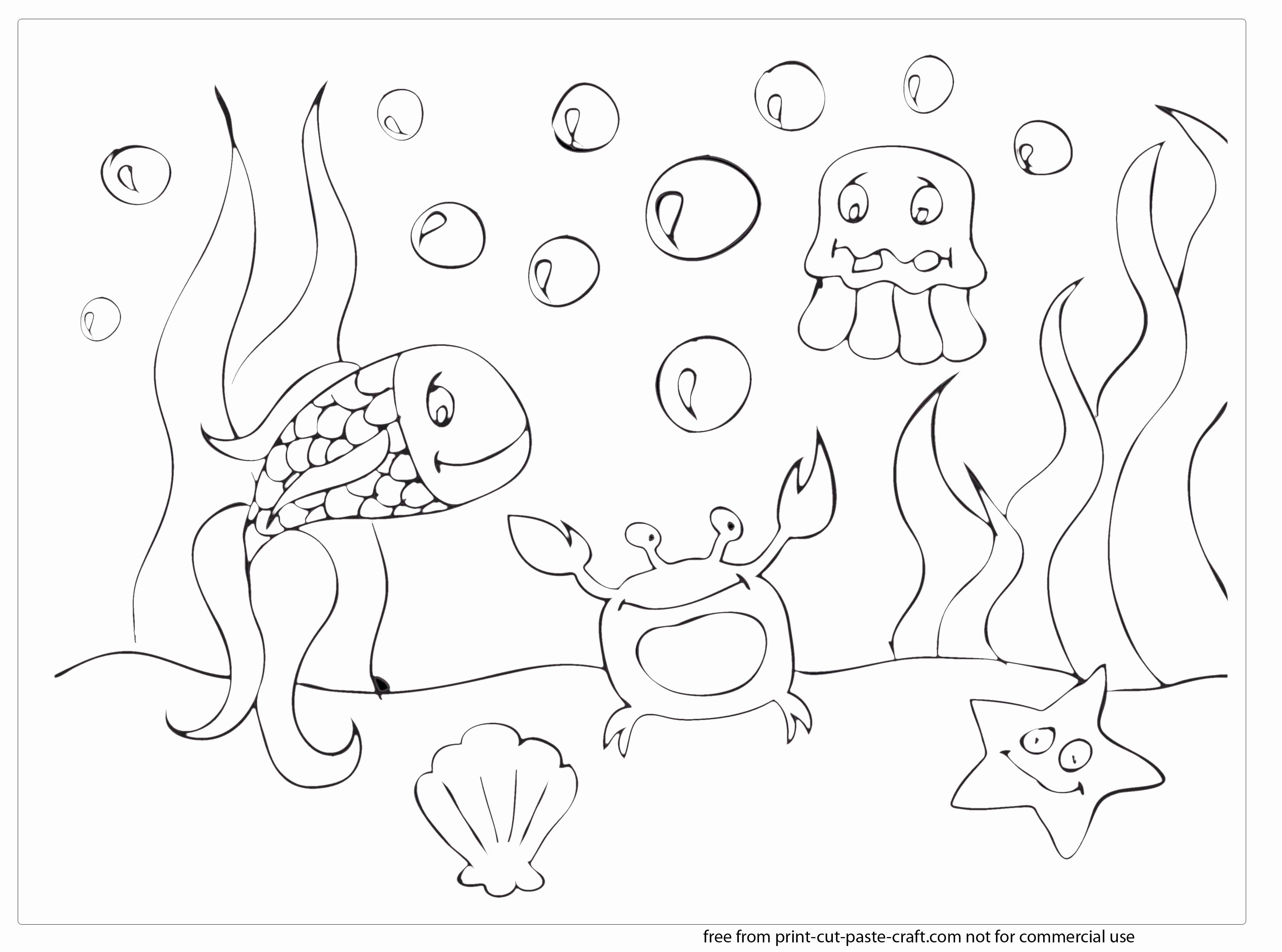 Cute Sea Animal Coloring Pages Unique Under The Ocean