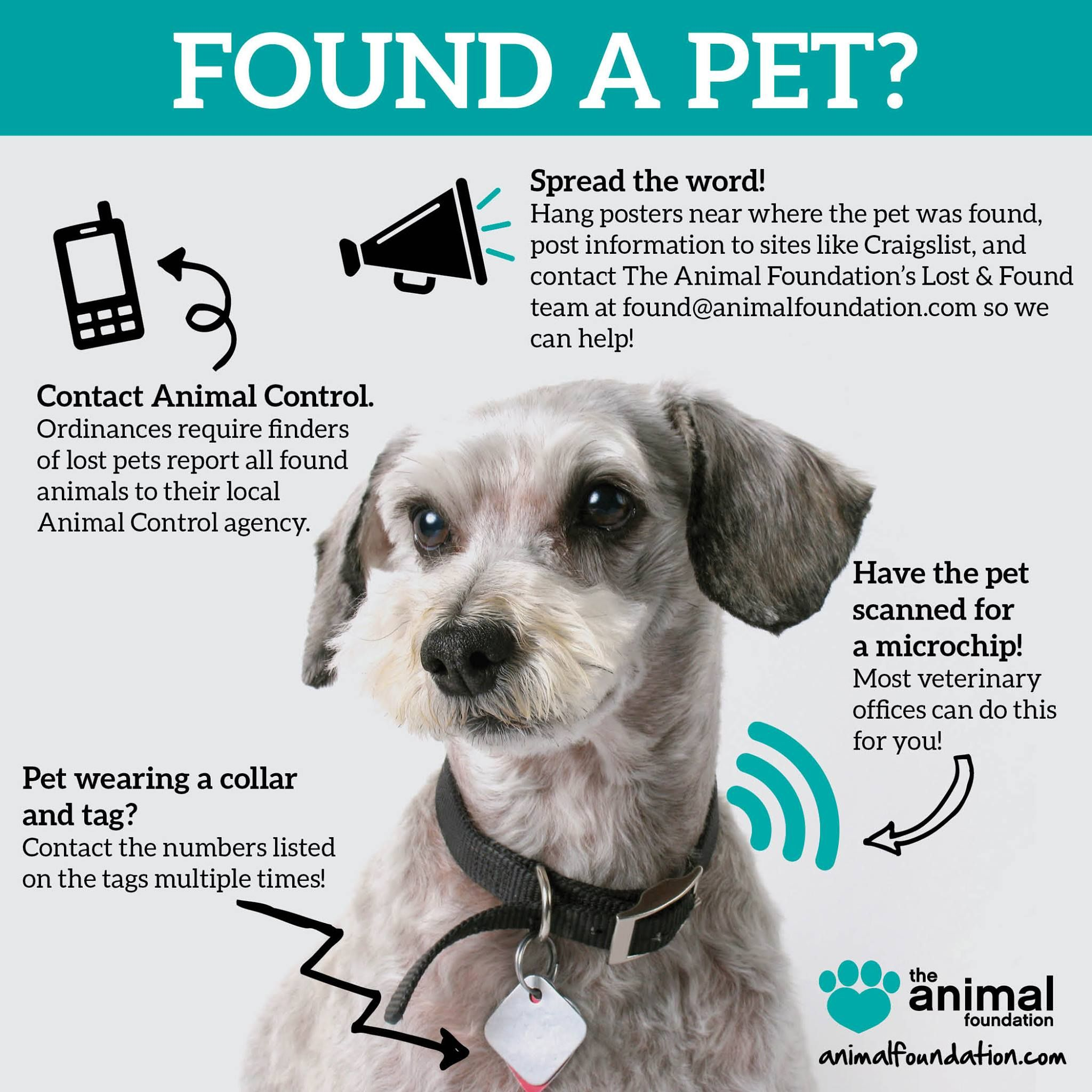 Please Pin Any Time You Find A Lost Pet We Encourage You To Try To Contact Their Owners By Following These Steps Losing A Pet Losing A Dog Pets