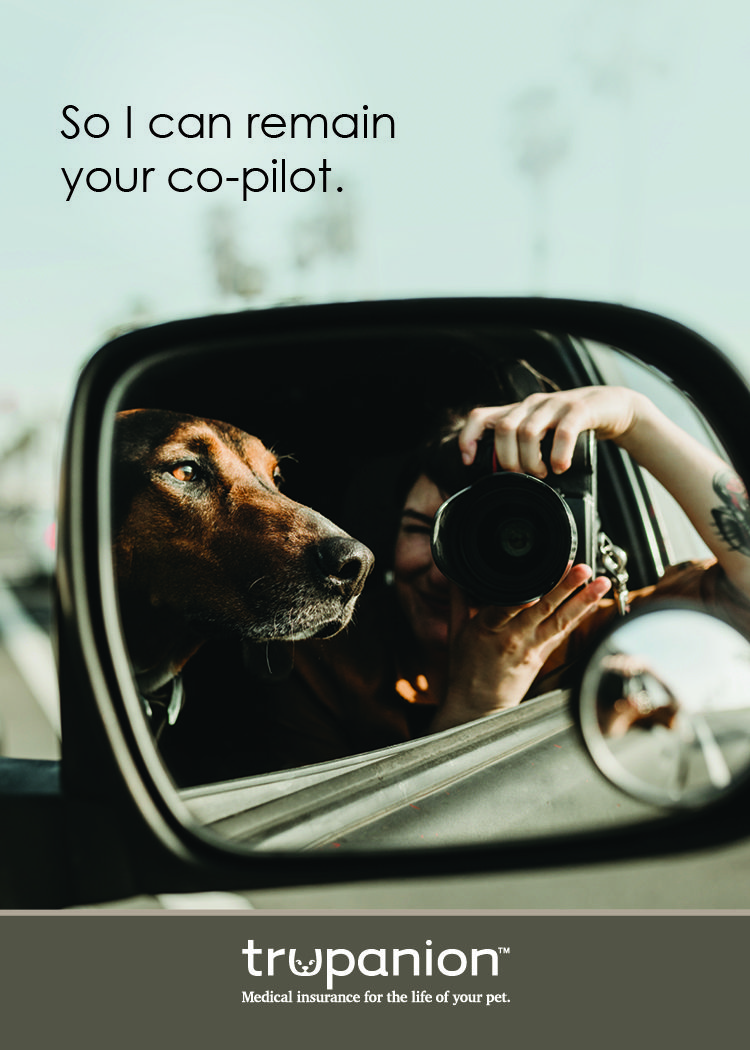Why do you choose Trupanion? Exploring with your copilot