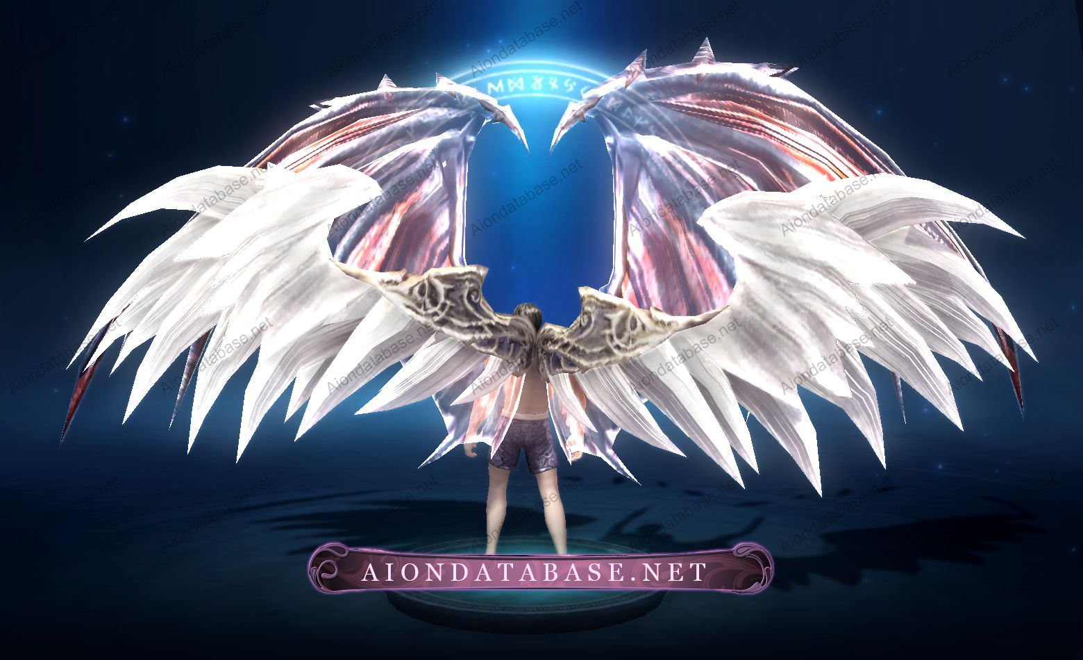 aion dragon wings - Google Search | Aion | Wings design ...