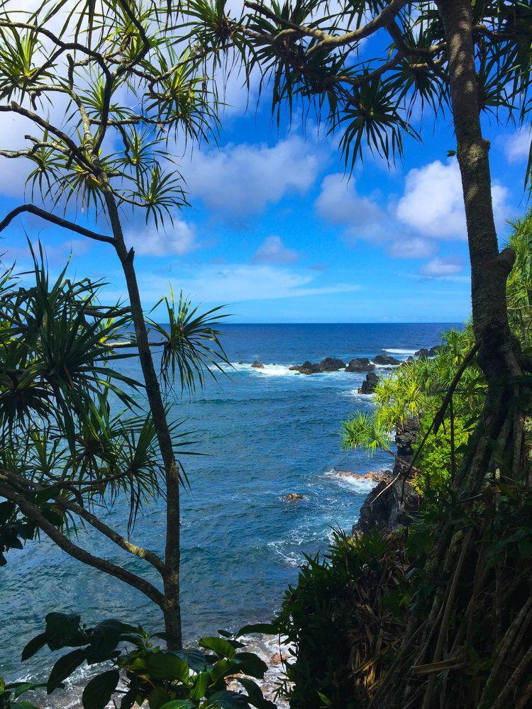 f1015594b2765df8d97d9c0ae2a72a3e - Hana Maui Botanical Gardens Hana Hi