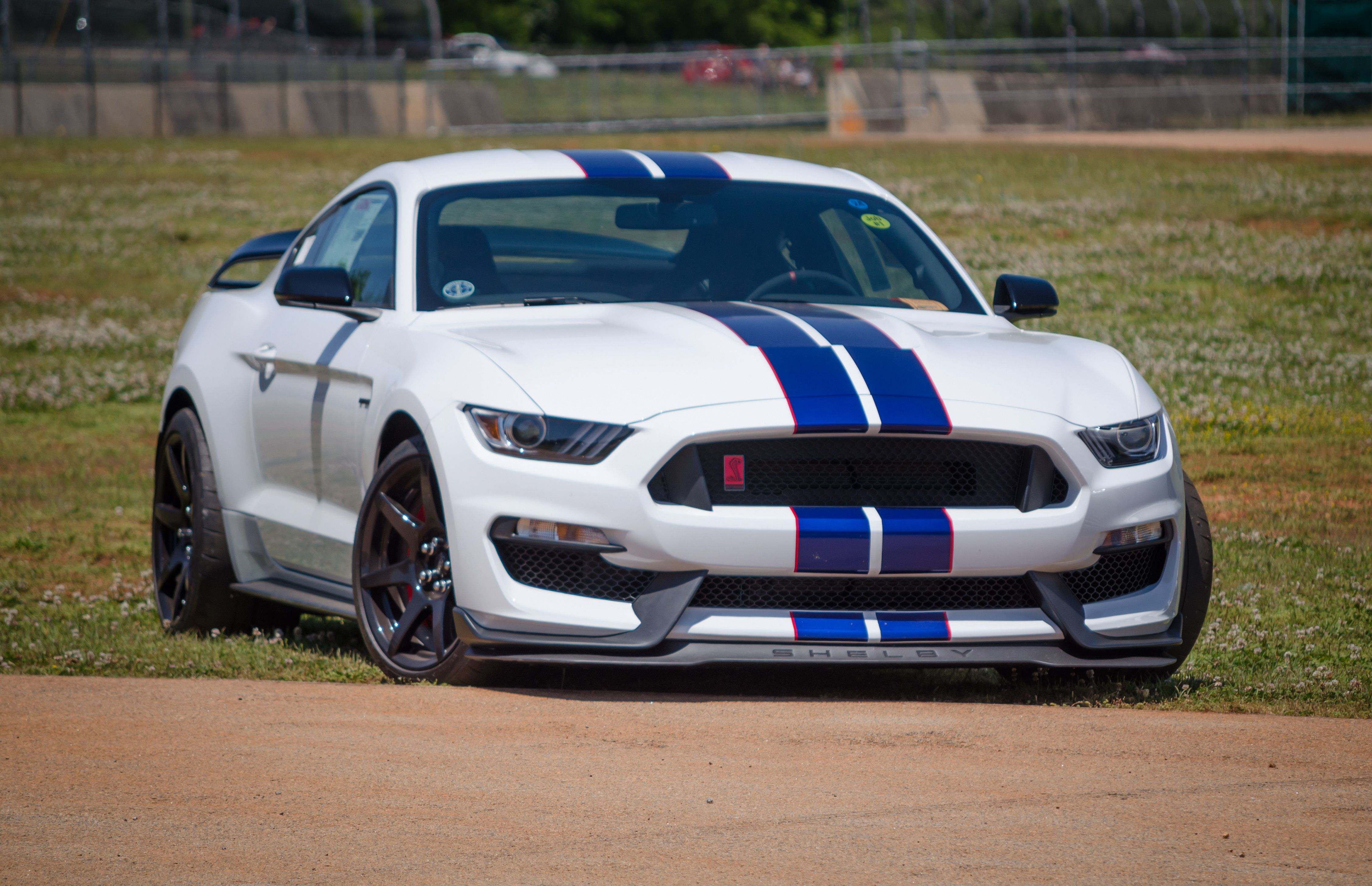 Shelby Gt350r 4514x2916 Oc Imgur Shelby Gt350r Ford Mustang Shelby Mustang Shelby