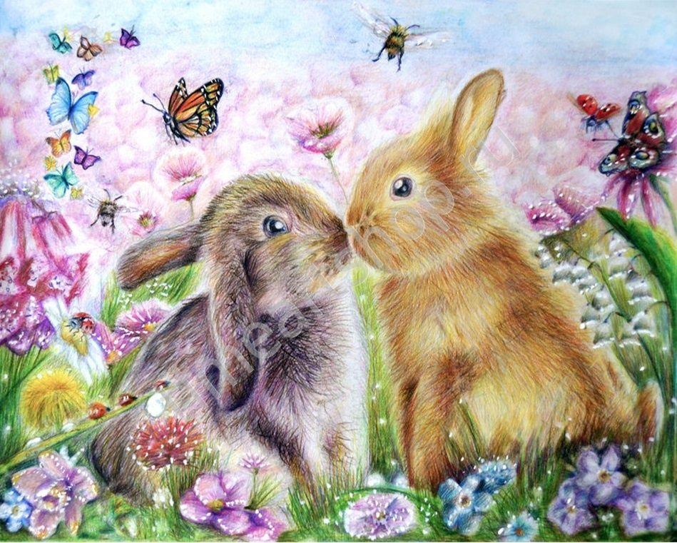 Кролики, картина раскраска по номерам, размер 40*50 см ...