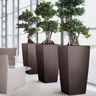 Superior This Self Watering Planter Makes Maintaining Flowers And Plants Effortless.  The Attractive Column Shape Of The Lechuza Cubico Is The Perfect Accent For  Any ...