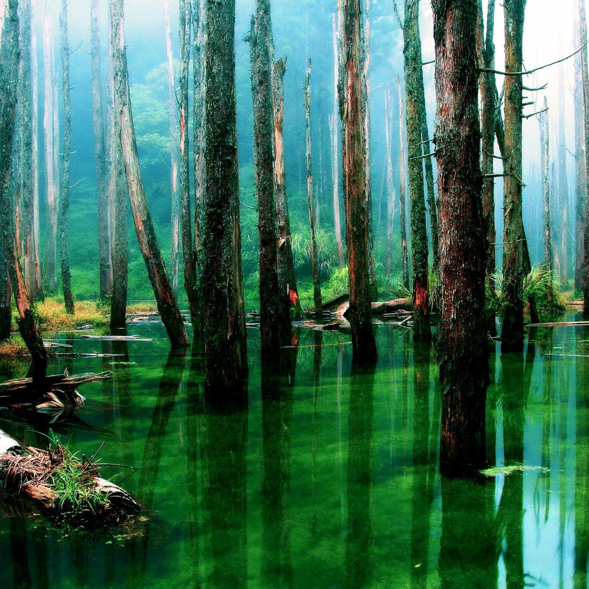 De Forest Search Partners - 9 Photos - 1 Review ...
