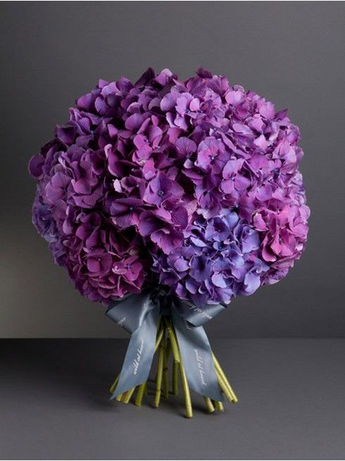 In Vogue Hydrangea Bouquet Order Nikki Tibbles London Based Luxury Flowers For Delivery To The United Bridal Flowers Purple Bride Bouquet Hydrangea Bouquet