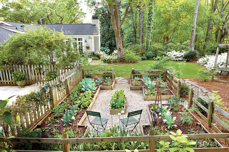 Yard With A Veggie Bed Chicken Coop And Fire Pit You Bet Garden Layout Cottage Garden Backyard