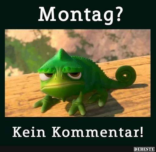 Montag? | DEBESTE.de, Lustige Bilder, Sprüche, Witze und ...