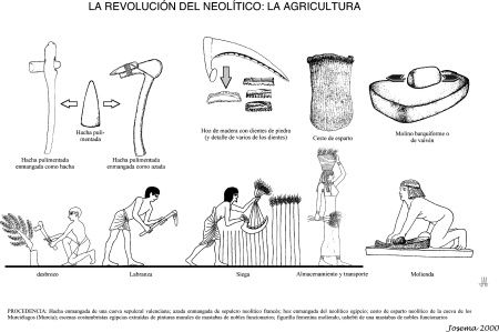 Dibujos Productos Tecnologico Y No Tecnologicos Para Colorear Buscar Con Google Neolitico Prehistoria Historia Universal