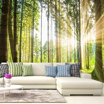 Vlies Fototapete 3 Farben Zur Auswahl Tapeten Wald Natur C B 0098
