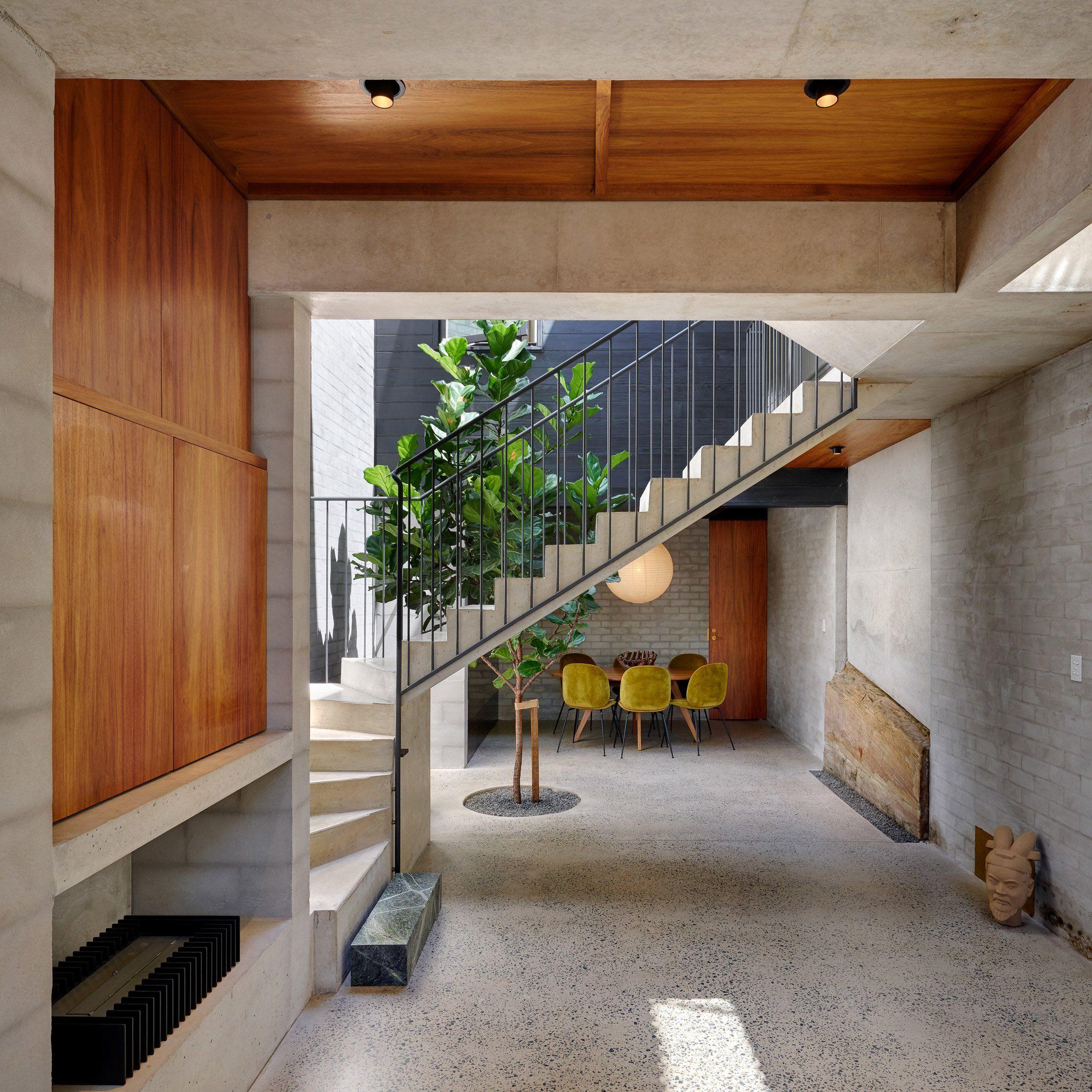 A Tree Grows Up The Lightwell That Australian Studio Welsh