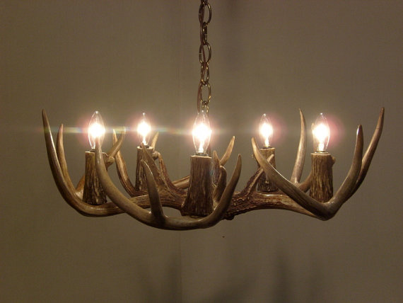 19 21 Dia 5 Light Low Profile Whitetail Antler Chandelier 6 8