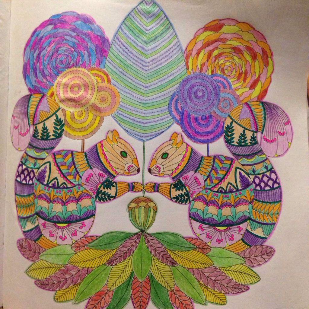Animal Kingdom Squirrels Millie Marotta Adult ColoringColoring BooksColouringAnimal