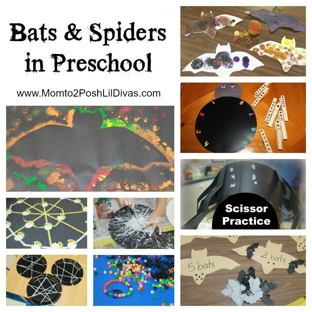 Spiders And Bats In Preschool