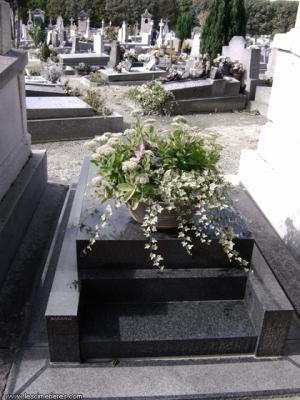Tombe De Marie Laforet : tombe, marie, laforet, Tombe, Celebrites, Tombes, Célèbres,, Pierre, Tombale,, Cimetière