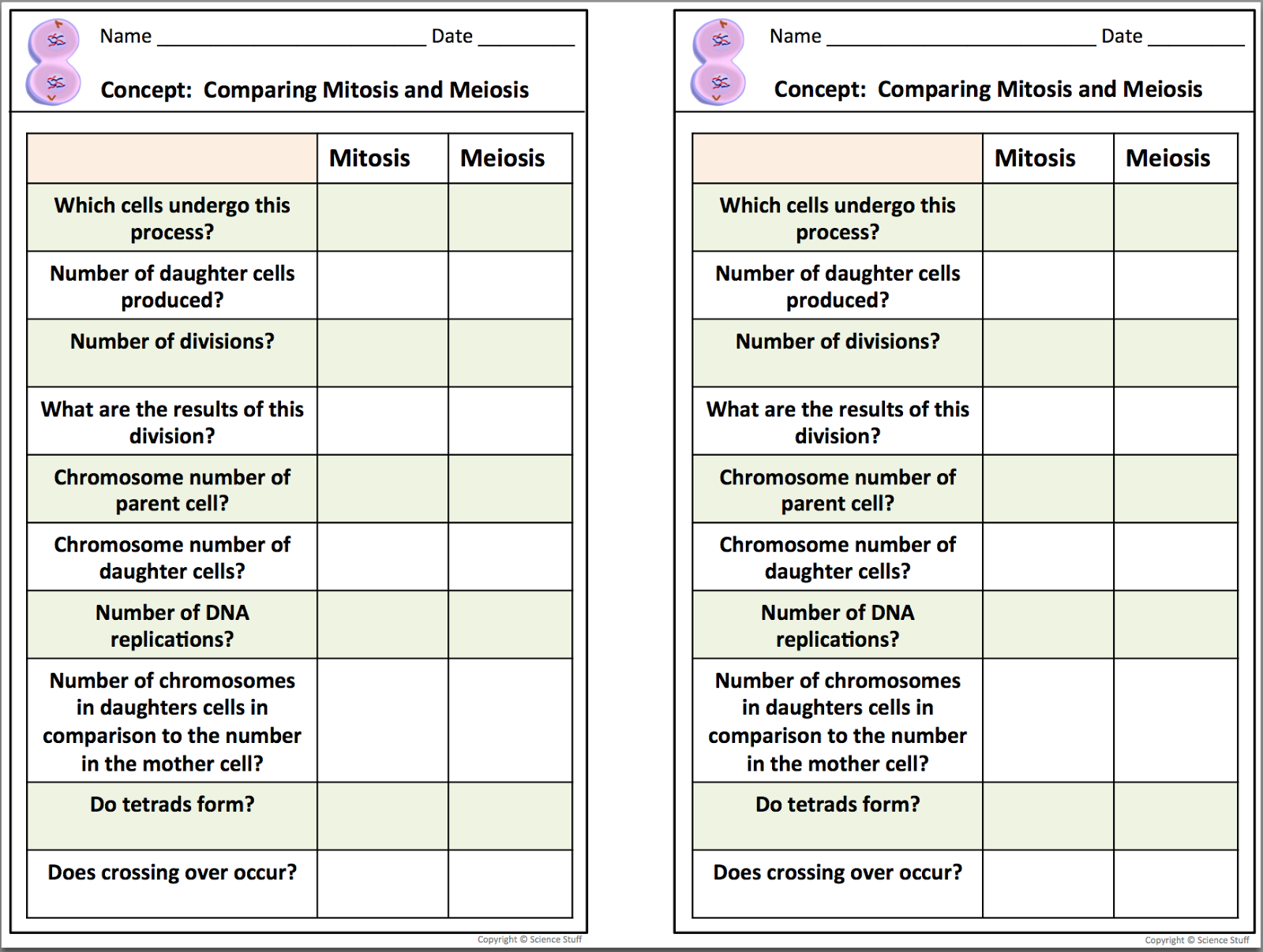 Biology Interactive Notebooks