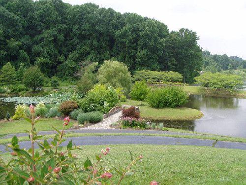 Meadowlark Botanical Gardens   Vienna, VA. Large And Small Ponds, Lots Of  Variety