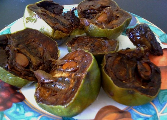 chocolate sapote httpsfarmtropicalcomproductwhite sapote
