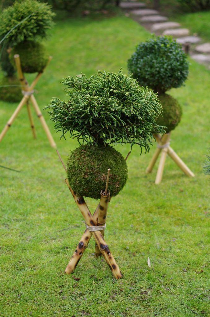 Tout savoir sur l art du kokedama meilleures id es for Idees plantes jardin