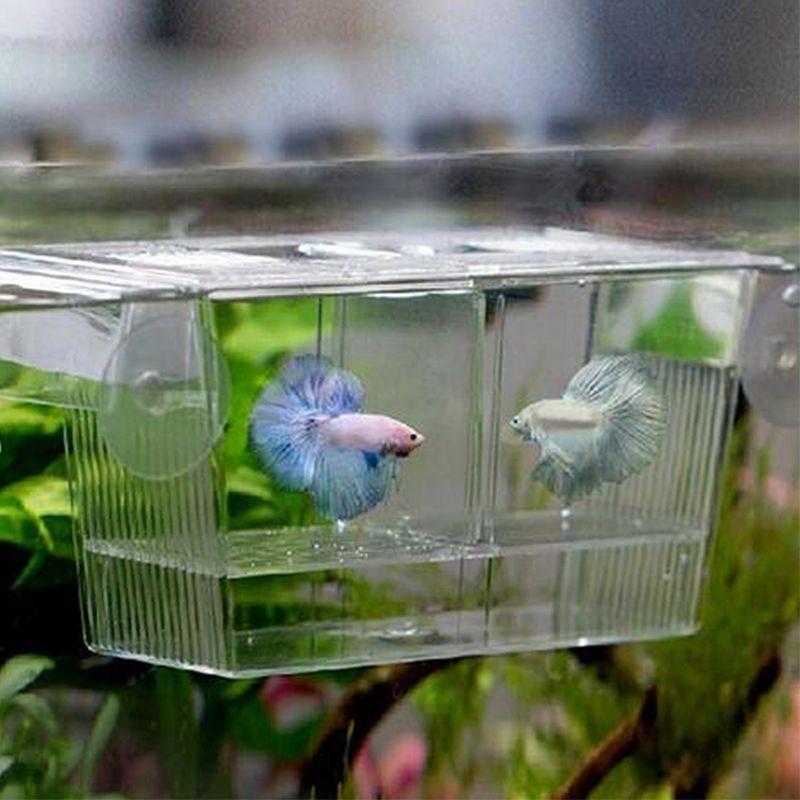 1 Pcs Large Plastic Transparent Fish Aquarium Breeding Box Self Floating Separation Box Acrylic Tanks Hatch Fish Breeding Aquarium Accessories Transparent Fish
