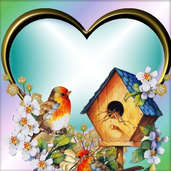 Birds Frame | corazones | Pinterest | Bird, Bird cards and Paper cards