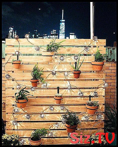 Photo of 13 Ways To Make Your Backyard A Twinkly Entertaining Spot Backyard String Lights…