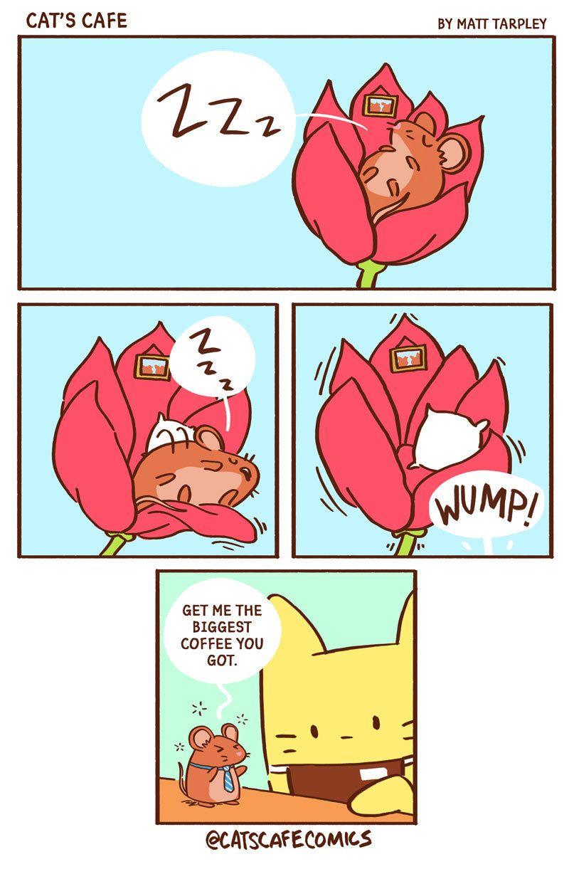 Going to be one of those days… - #animals #cat #catscafe #coffee #coffeetime #comic #comics #cute #fieldmouse #goodmorning #mornings #sleepy #tired #webcomic #webtoon