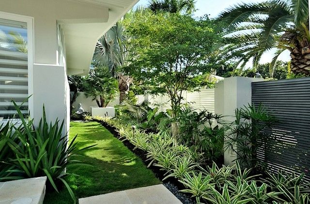 contemporary tropical garden bahamian retirement garden rh pinterest com