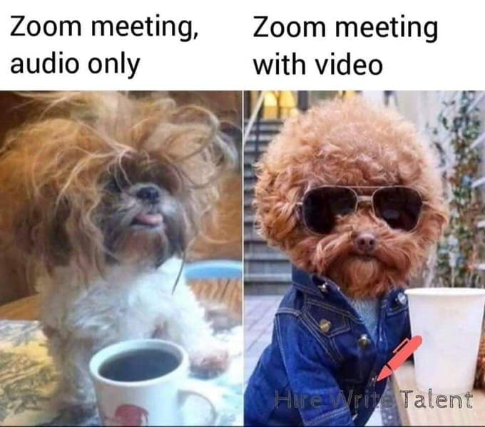 Zoom Fashion Really Funny Memes Funny Relatable Memes Crazy Funny Memes