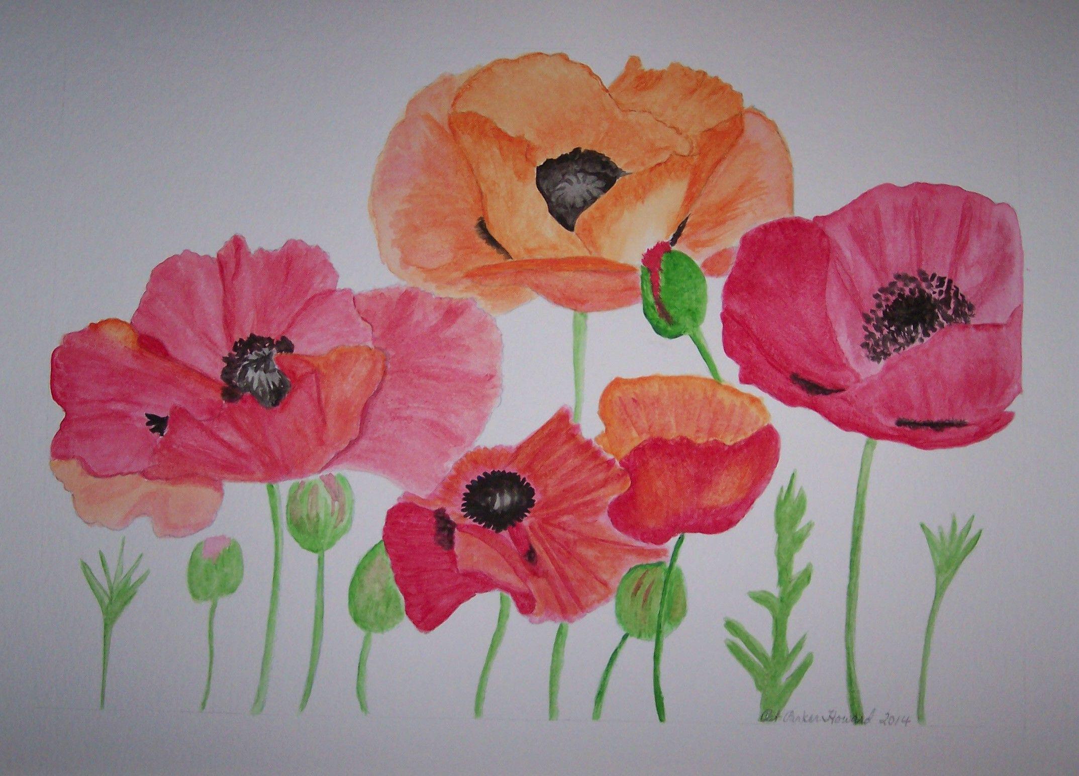 Poppy flower essay in hindi best flower 2017 nan poppy palette revisited giclee canvas art canvases mightylinksfo