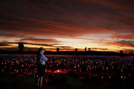 Field of Light: magical installation at Uluru – in pictures #lightartinstallation