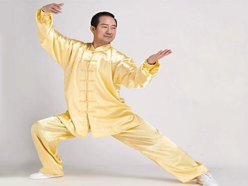 2464298d0e85 Tai Chi Clothing