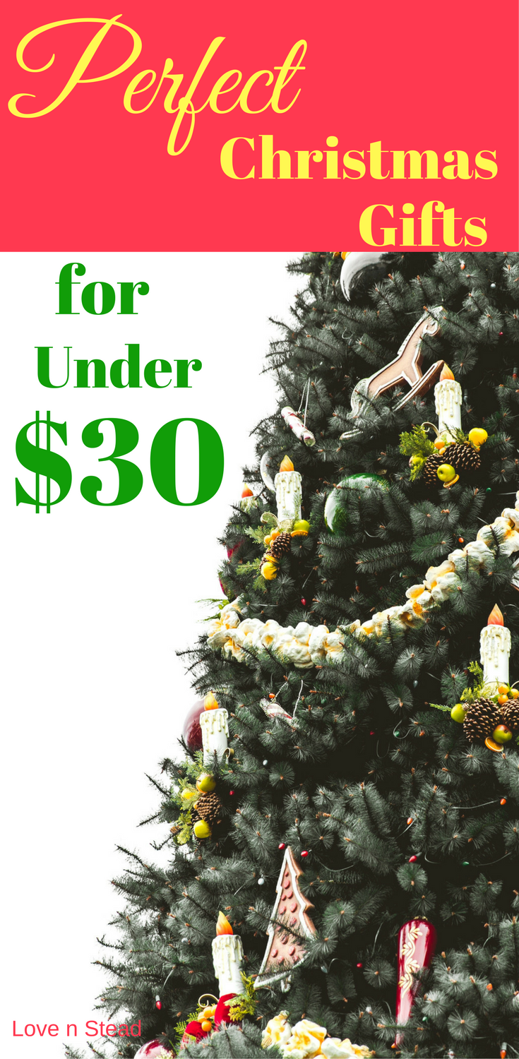 Best xmas gifts under $30