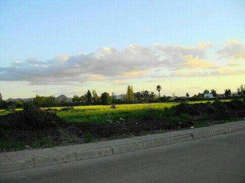 Paisaje de Santa Cruz Chile, vista desde calle Cabello, antes de la ampliacion de Avenida Las Toscas