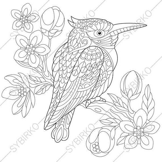 Adult Coloring Pages. Kookaburra Bird. Zentangle Doodle
