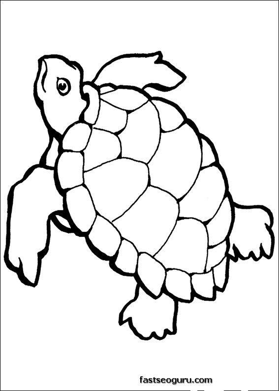 Sea Animals Coloring Pages Printable Homepage Animal Turtle
