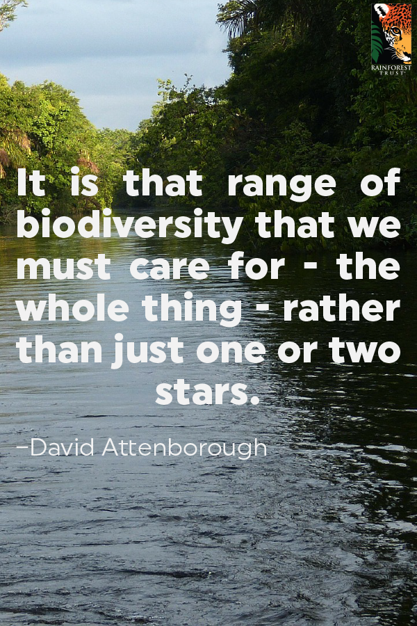 It is that range of biodiversity that we must care for the