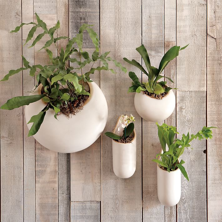 hese Ceramic Wall Planters (with one designed specifically for ...