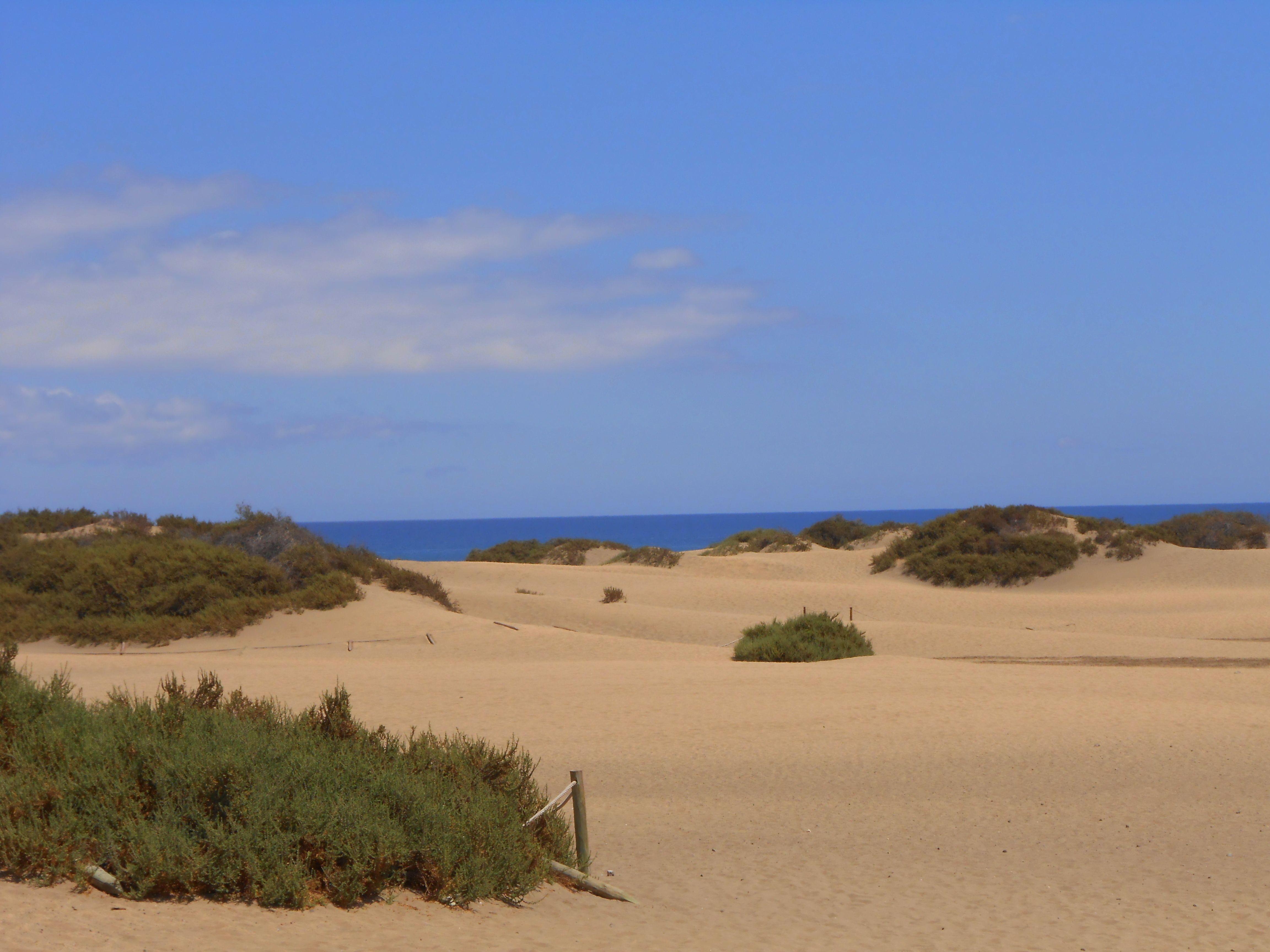 Dunes Maspolomas   Country roads, Outdoor, Beach on Dune Outdoor Living  id=66288