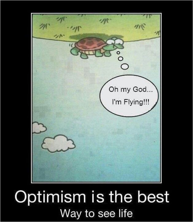 Ever feel like a turtle on its back? Change your perspective.