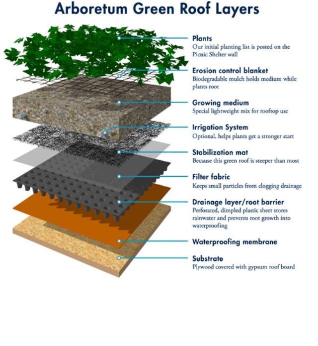 More Layers Techosverdes Green Roof Garden Green Roof Roof Plants