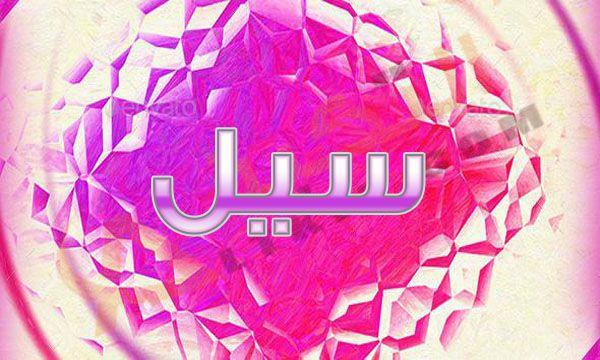 معنى اسم سيل في قاموس المعاني والمعجم انتشرت هذه الأيام الكثير من الأسماء الجديدة والتي تم اكتشافها في بعض المعاجم العربية والأجنبية كما انتش Cool Stuff Tetris