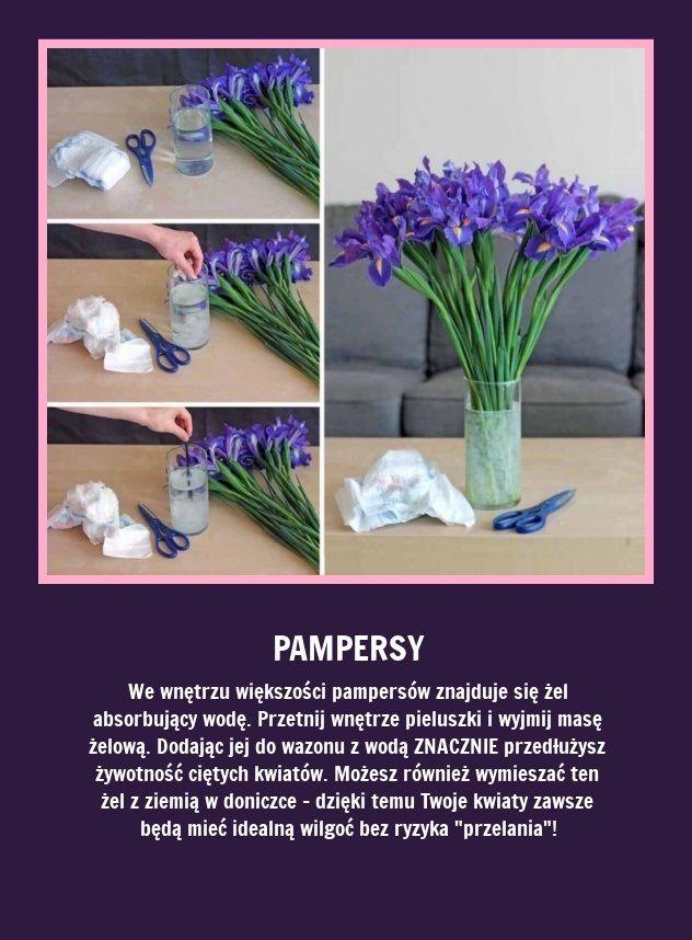 Wykorzystaj Pampersy Aby Przedluzyc Zycie Cietym Kwiatom Zobacz Jak Fun Facts Life Hacks Diy And Crafts