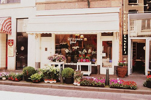 Pin By This Frolicking Life On Floral Bussines Flower Shop Flower Store Flower Studio